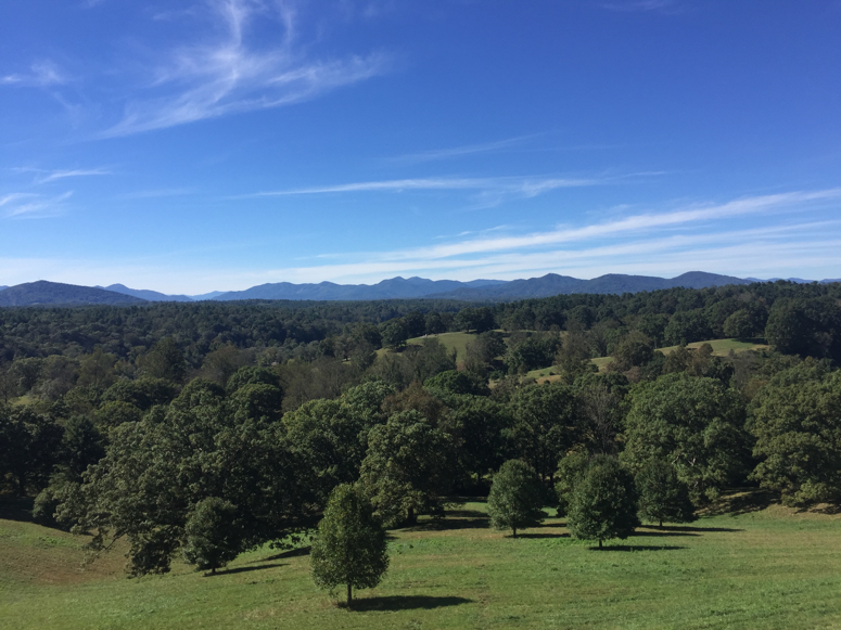 View from Biltmore Mansion.