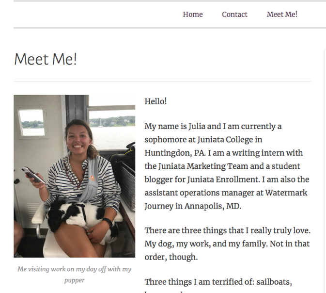 The beginnings of my About Me page on my blog